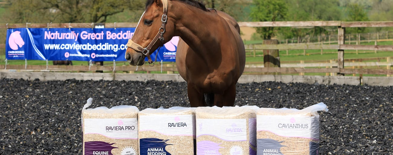 You can find our dust extracted horse bedding in professional & amateur yards around the Country